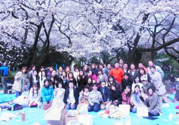 お花見会、新宿御苑を散策しました! -東京新宿の陶芸教室 プロップスアートスクールで陶芸体験-の画像
