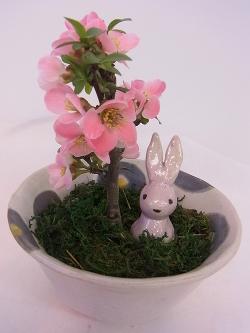 盆栽 -東京新宿の陶芸教室 プロップスアートスクールで陶芸体験-の画像