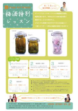 2014年梅酒作り特別レッスン☆終了しました! -東京新宿の陶芸教室 プロップスアートスクールで陶芸体験-の画像